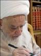 انتقاد آیت الله صافی گلپایگانی از روسای مجالس کشورهای اسلامی