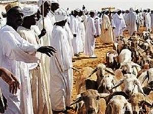 عید قربان عربستان