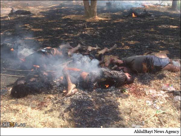نتیجه تصویری برای میانمار راخین مسلمانان