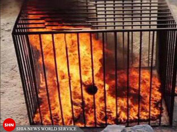 داعش خلبان اردني را زنده زنده سوزاند
