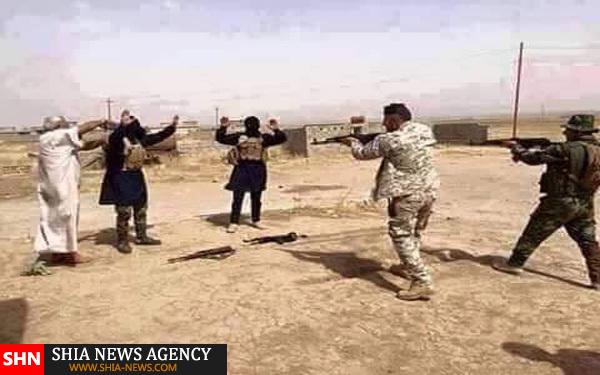 برخی از داعشی ها اینگونه در برابر نیروهای امنیتی عراق تسلیم شدند+ تصویر