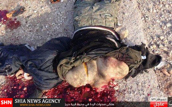 درگیری گروه های تروریستی در حلب+ تصاویر(+18)