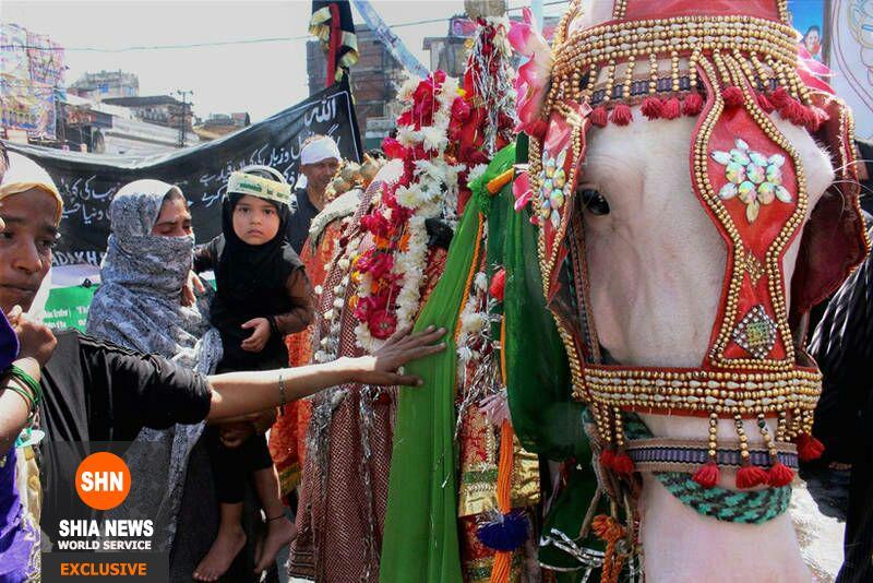 اختصاصی/ برگزاری 118هیئت عزاداری اربعین حسینی در شهر لکنهو هندوستان